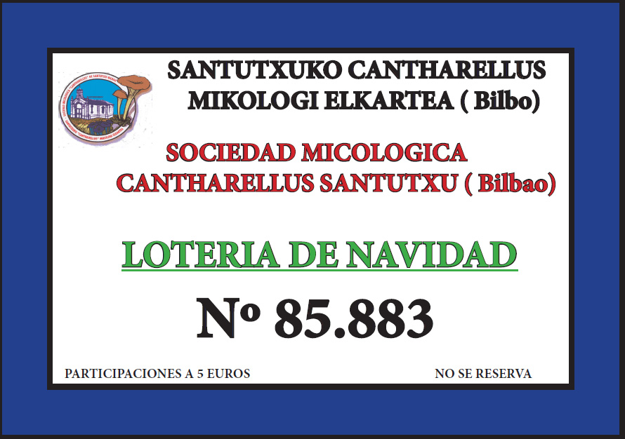 2016-loteria