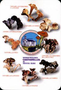 Calendario2001