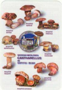Calendario2003