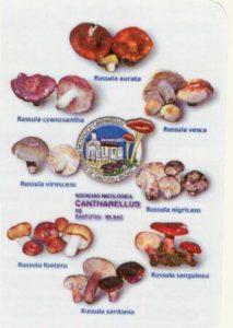 calendario2004
